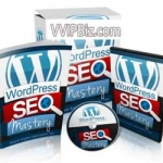 WordPress SEO Mastery MRR - eBook and Videos