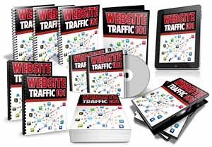 Website Traffic 101 Video Series PLR